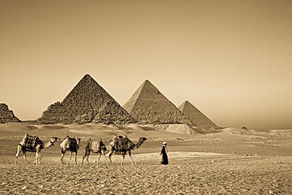 图片标题:秋天,驼队,正面,气势,金字塔