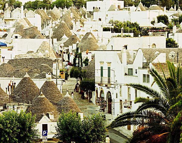 图片标题:锥形石灰板屋顶,特色,房子
