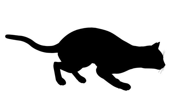 图片标题:黑猫,艺术,插画,剪影,白色背景