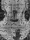 特写,音符,层次,小提琴