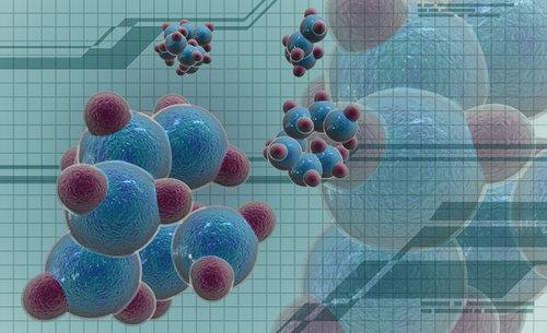 >细胞结构