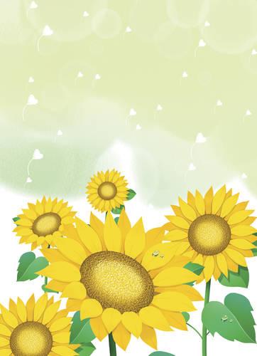 喜爱,可爱,郁金香,花,卡通,背景