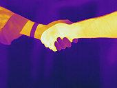 热成像,握手,彩色,展示,温度,白色,黄色,橙色,红色,紫色,黑色