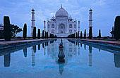 印度,北方邦,泰姬陵,建造,沙阿,反射,水塘