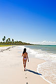 南美,巴西,巴伊亚,圣保罗,美女,走,海滩,岛屿
