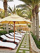 伞,休闲椅,棕榈树