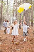 幸福之家,气球,木头