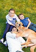 家庭,放松,狗,草坪