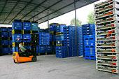 重庆长安民生物流公司的储运员工正在劳作