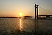 日落,福建,泉州,河,桥
