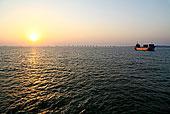 福建,泉州,日落,海水