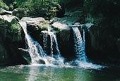 庐山乌龙潭联合国世界自然遗产