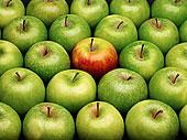 青苹果,苹果