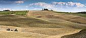 收获,农业,风景,锡耶纳,托斯卡纳,意大利