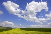 汽车背景-云与天空