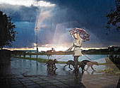 女人,伞,走,狗