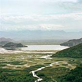 航拍,湿地,乡村风光