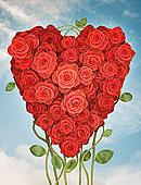 玫瑰,放置,心形