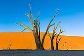 死亡谷,索苏维来地区,纳米比亚