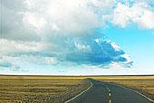 草地,西藏,公路