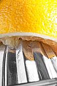 柠檬,榨汁机