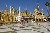 东北方,平台,大金塔,仰光,缅甸,东南亚