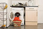 洗衣机,厨房