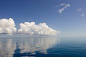 云,高处,平静,海洋