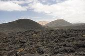 火山地貌,蒂玛法雅国家公园,兰索罗特岛