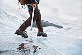 男青年,走,棉田豪冰河,阿拉斯加,美国