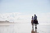 骑马,海滩,奥克兰,新西兰