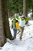 伴侣,打雪仗,一起,木