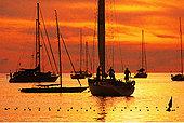 游艇,日落,普吉岛,泰国