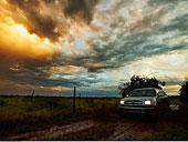 卡车,路湿,瑞欧格兰山谷,德克萨斯,美国