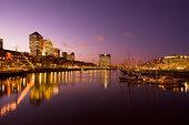 写字楼,码头,布宜诺斯艾利斯,阿根廷