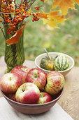 碗,苹果,葫芦属植物,桌上