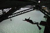蹦极,桥,奥克兰,北岛,新西兰