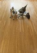 椅子,纸板箱,空,办公室