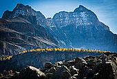 高山,落叶松,山脊,岩石风景,湖产品,步道,优鹤国家公园,英属哥伦比亚大学,加拿大
