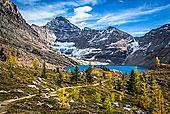 湖,远足径,在秋天,优鹤国家公园,英属哥伦比亚大学,加拿大
