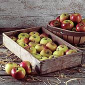 苹果,一个木制的,板条箱