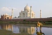 印度,泰姬陵,庙宇,埋葬,场所,日落,男孩,骆驼