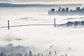 狮门大桥,温哥华,遮盖,雾,不列颠哥伦比亚省,加拿大