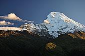 安娜普纳,南,乡村,保护区,尼泊尔