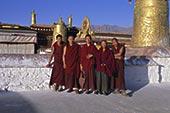 僧侣,大昭寺,拉萨,西藏,中国,亚洲