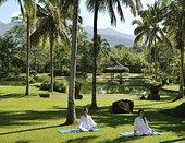 瑜珈,农场,健康,菲律宾,东南亚,亚洲