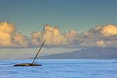 帆船,海洋,拉海纳,莫洛凯岛,毛伊岛,夏威夷,美国