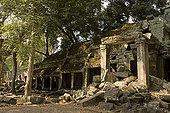 柬埔寨,吴哥,收获,塔普伦寺,庙宇